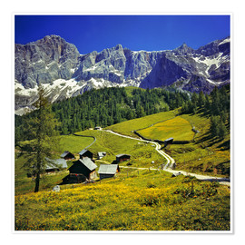 Poster  A pasture in the Dachstein Alps - Ric Ergenbright