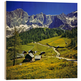 Wood print  A pasture in the Dachstein Alps - Ric Ergenbright