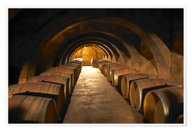 Premium poster Wine cellar with wine barrels