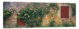 Canvas  Climbing roses cover an old stone wall - Ric Ergenbright