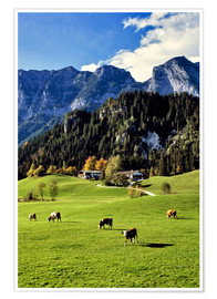 Premium poster  Alpine views with forest and pasture - Ric Ergenbright