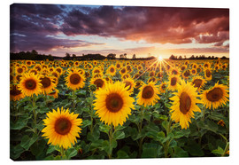 Canvas print  Sunshine - Michael Breitung