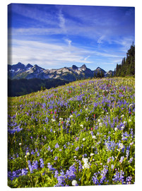 Canvas print  Flower meadow in front of Mount Rainier - Chuck Haney