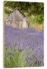 Wood print  Lavender field and scales - Janell Davidson