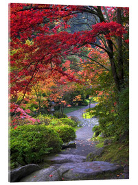 Acrylic print  Path at Japanese Garden - Janell Davidson