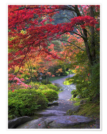 Premium poster Path in a Japanese garden