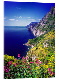 Acrylic print  Cliffs with wildflowers - Ric Ergenbright