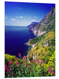 Foam board print  Cliffs with wildflowers - Ric Ergenbright
