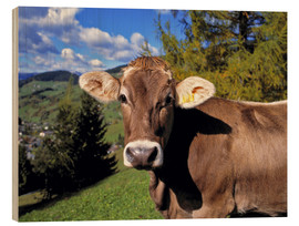 Wood print  Cow in the Dolomites - Ric Ergenbright