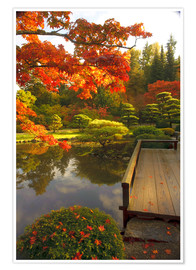 Premium poster Japanese garden with maple