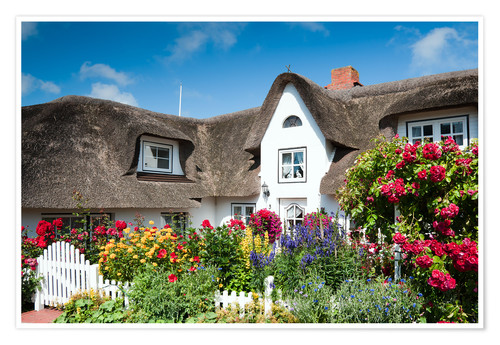 Premium poster Amrum -  thatched house with flower garden