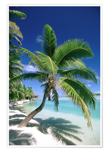 Premium poster Aitutaki on Cook Islands