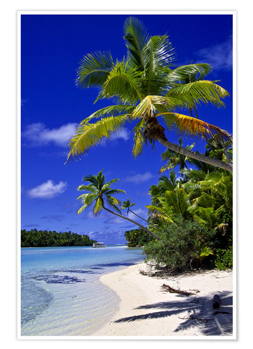 Premium poster Palm trees and beach on Tapuaetai