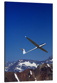 Aluminium print  Glider pilots over the mountains - David Wall