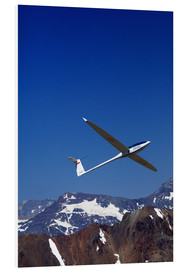 Forex  Gliding over the snowy mountains - David Wall