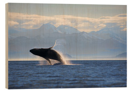 Wood  Humpback Whale on Frederick Sound - Paul Souders