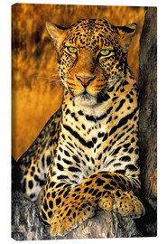 Canvas print  African Leopard - Dave Welling