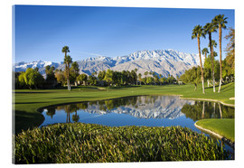 Acrylic print  Golf course in Palm Springs - Walter Bibikow
