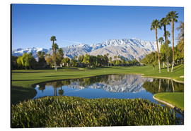 Aluminium print  Golf course in Palm Springs - Walter Bibikow