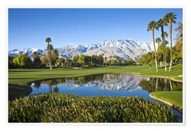 Premium poster  Golf course in Palm Springs - Walter Bibikow