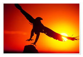 Premium poster A golden eagle flies at dawn