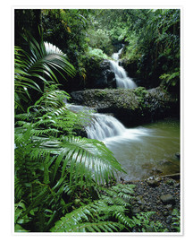 Premium poster Waterfall in Hawaii