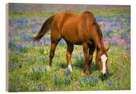 Wood  Horse on a meadow with wildflowers - Darrell Gulin