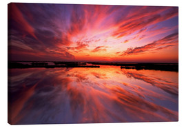 Canvas print  Red sunset - Jay O'Brien