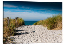 Canvas print  Baltic Sea - path to the beach - Reiner Würz RWFotoArt