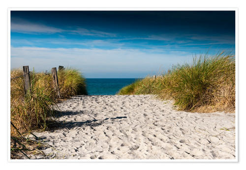 Premium poster Baltic Sea - path to the beach
