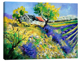 Canvas print  Lavender fields - Pol Ledent