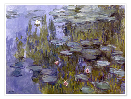 Poster Water Lilies (Nympheas)