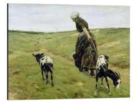 Aluminium print  Woman with goats in the dunes - Max Liebermann