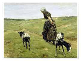 Premium poster Woman with goats in the dunes