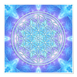 Premium poster Flower of Life  - Dolphin Awareness