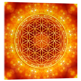 Acrylic glass  Flower of life - golden age - Dolphins DreamDesign