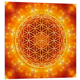 Forex  Flower of Life - Golden Age - Dolphins DreamDesign
