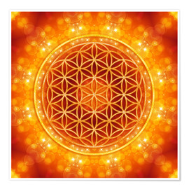 Premium poster Flower of life - golden age