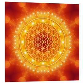 Forex  Flower of Life - Golden LightEnergy - Dolphins DreamDesign