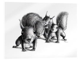 Acrylic print  Three squirrel - Stefan Kahlhammer