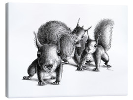 Canvas  three squirrels - Stefan Kahlhammer
