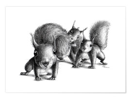Poster  three squirrels - Stefan Kahlhammer