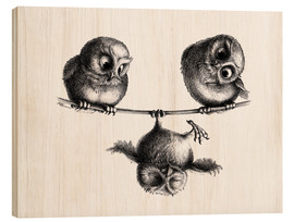 Wood print  Three owls - Stefan Kahlhammer