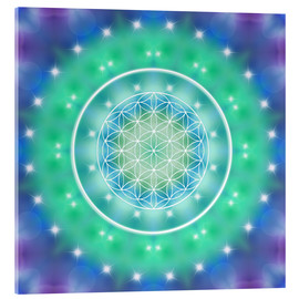 Acrylic print  Flower of Life - Relaxation - Dolphins DreamDesign