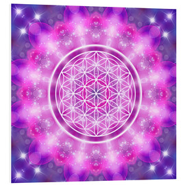 Forex  Flower of Life - Love Essence - Dolphins DreamDesign