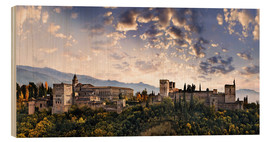 Wood print  Alhambra in Granada - Michael Rucker