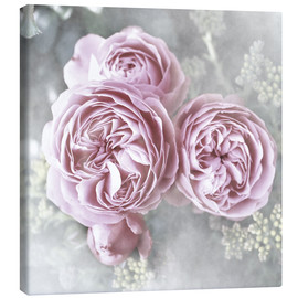 Canvas  Roses in shabby style - Christine Bässler