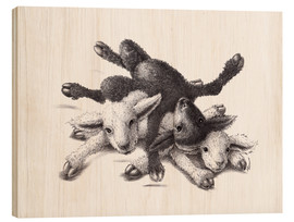 Stefan Kahlhammer - Three Sheep - Ball Of Wood