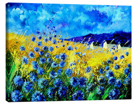 Canvas  Cornflowers field - Pol Ledent