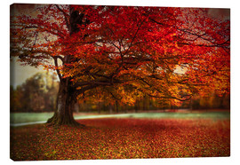 Canvas  Finest autumn - Hannes Cmarits